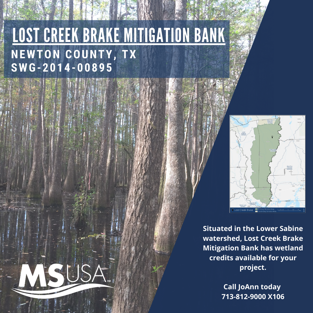 Lost Creek Brake