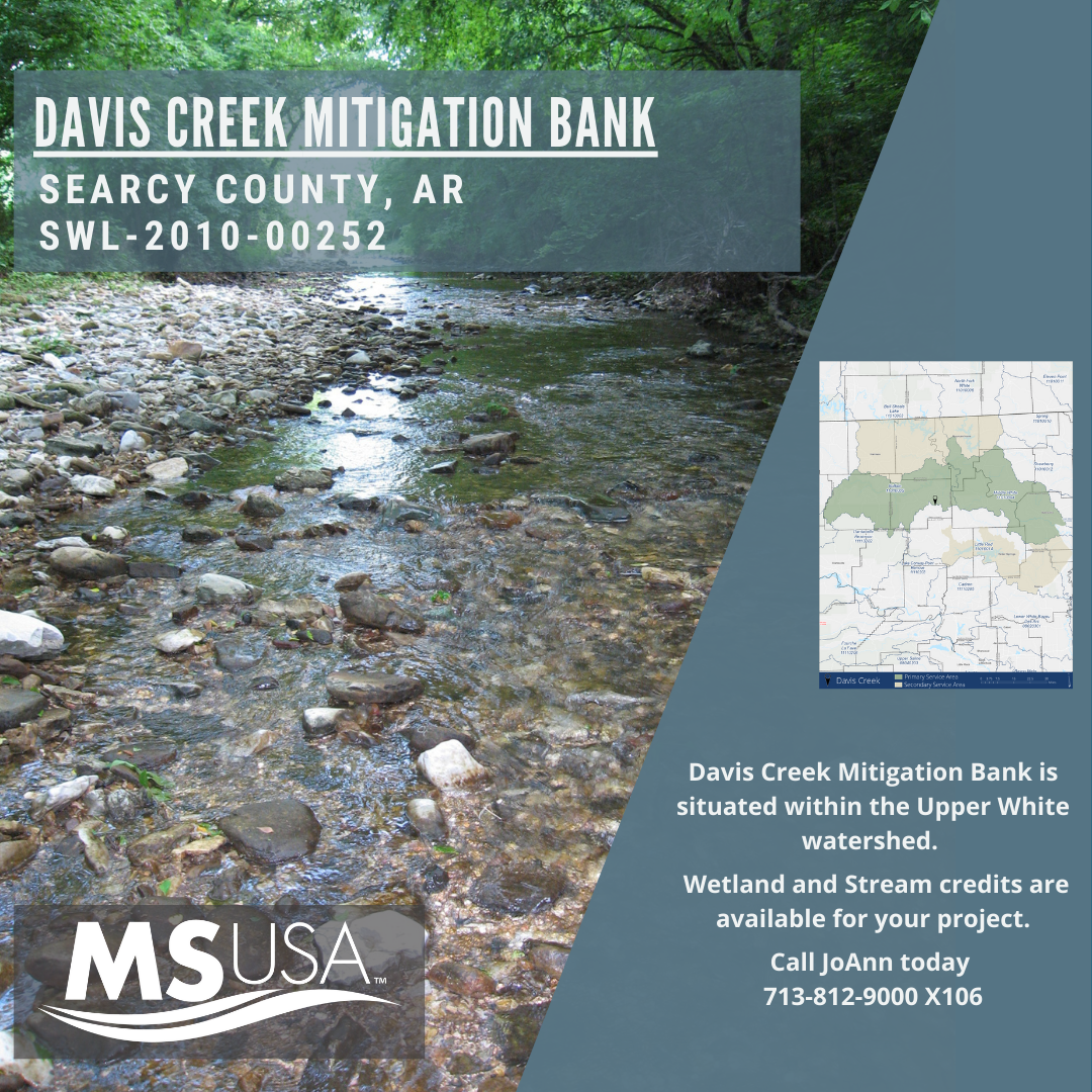 Bank Highlight: Davis Creek