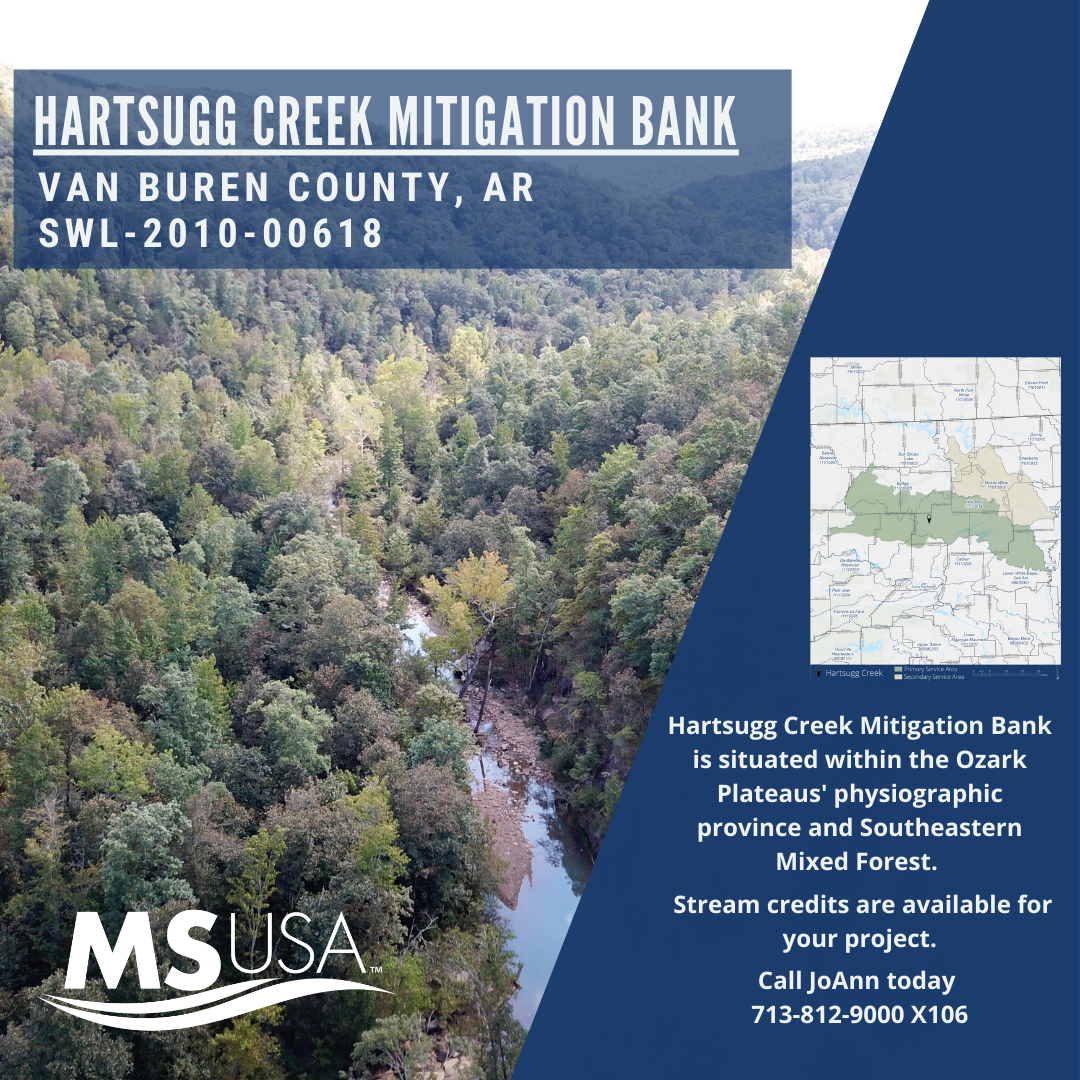 Bank Highlight: Hartsugg Creek