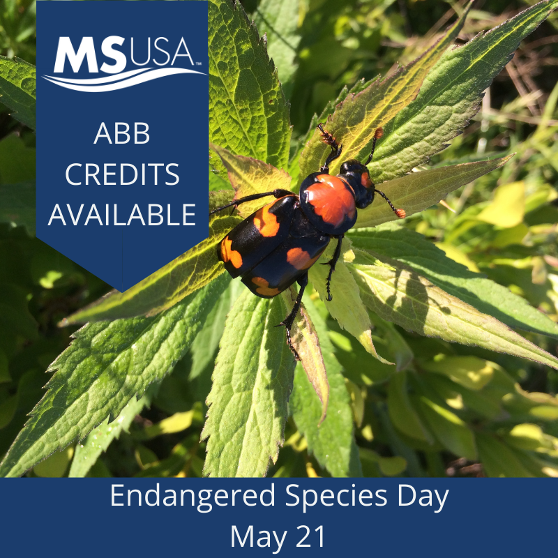 16th Annual Endangered Species Day