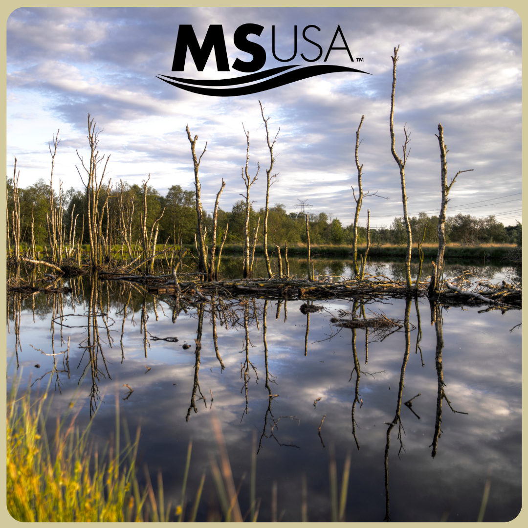 May is American Wetlands Month…