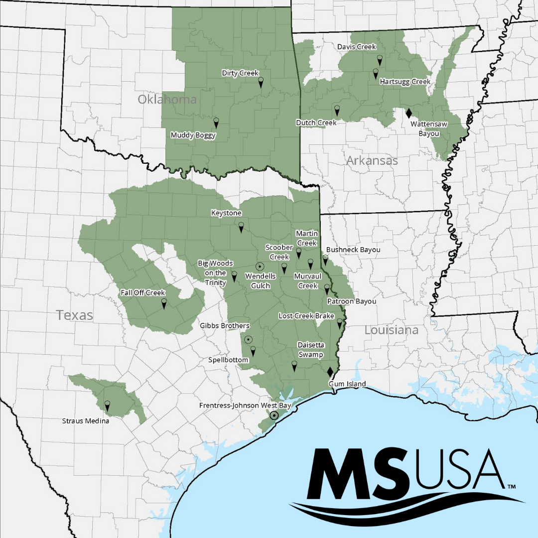 MSUSA has you covered.